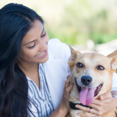 Bringing Pets on Locum Tenens Assignments | 3 Tips